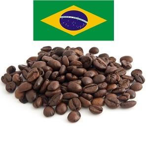 פולי קפה שלמים קלויים – ברזיל