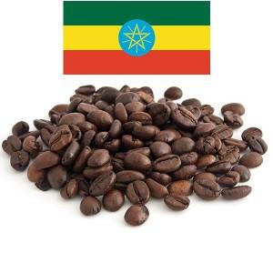 פולי קפה שלמים קלויים – אתיופיה