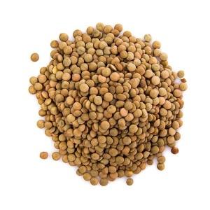 עדשים ירוקות – 500 גרם